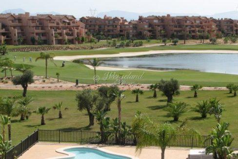 Bassengområde og golf