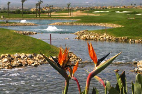 Pappegøye Plante Og Vann Ved Golf